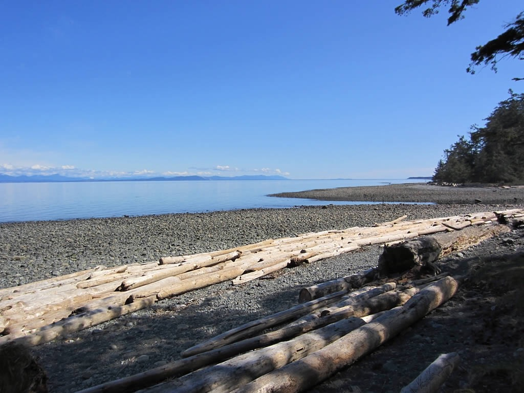 Vancouver Island remains a seller's market